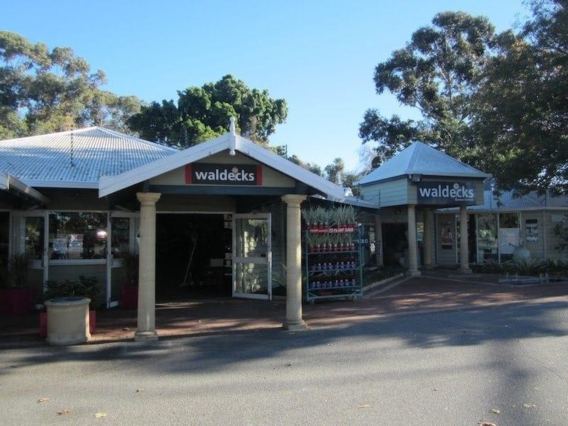 Lakeview Café Waldecks, Kingsley