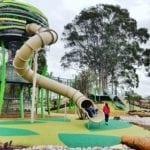 Jungle Park Whiteman Edge